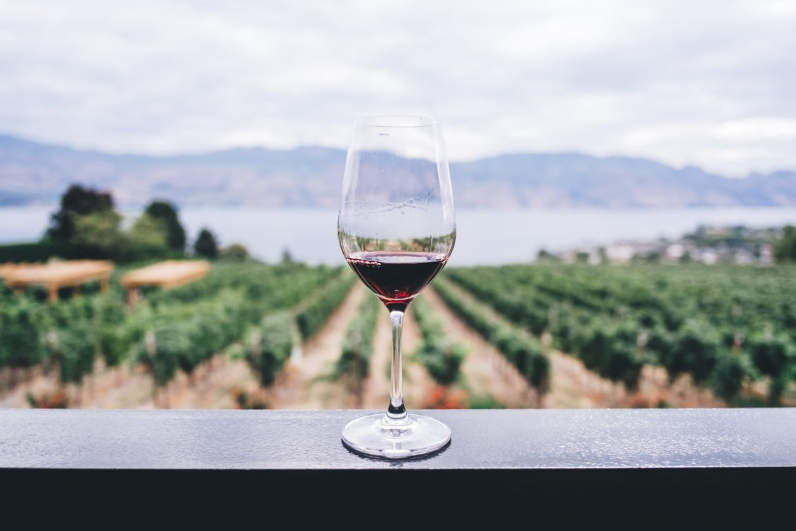 wine glass with vineyard in background